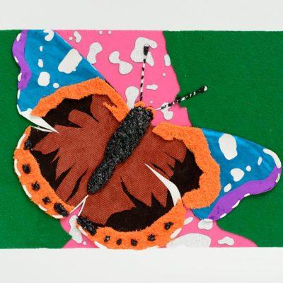 Taktila vlinder gedetailleerd, voor de gevorderde Taktila gebruiker